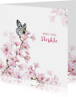 Sterkte bloesemtakken vlinder