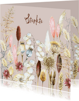 Sterkte droogbloemen