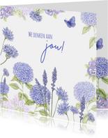 Sterkte hortensia blauw