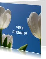 sterkte kaart tulpen II - LB