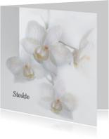 Sterkte met orchideeën