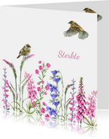 Sterkte vogeltjes bloemen