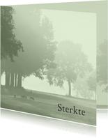 Sterktekaart Hollands landschap