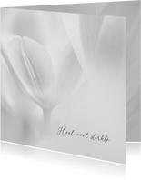 Sterktekaart tulpen