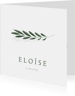 Stijlvol minimalistisch geboortekaartje met olijftakje