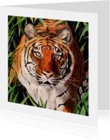 Tijger - kunstkaart