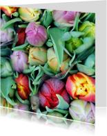Tulpen fotokaart