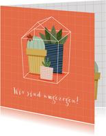 Umzugskarte Kaktushaus