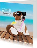 Vakantiekaart - Boris fijne zomer
