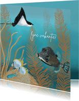 Vakantiekaart tropische vissen