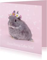 Valentijn - Some Bunny Likes You
