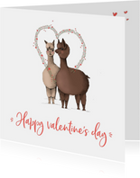 Valentijn - twee lama's happy valentine
