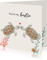Valentijnskaart - Schildpadjes met hartje