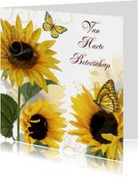 Van Harte Beterschap zonnebloemen