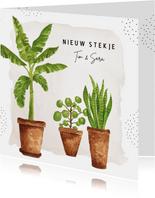 Verhuiskaart met aquarel kamerplanten