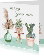 Verhuizen planten en pampasgras