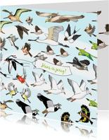 Verjaardag - allemaal vogels