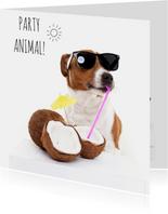 Verjaardag - Boris de hond - Party Animal