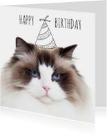 Verjaardagskaarten - Verjaardag | Not so happy birthday cat | Kat