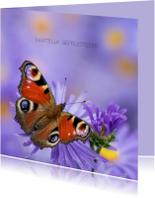 Verjaardag vrolijk met vlinder
