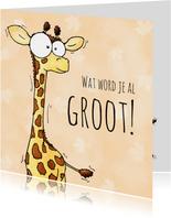 Verjaardagsfelicitatie giraf 'wat wordt je al groot'