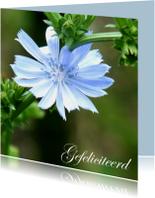 Verjaardagskaart blauwe bloem