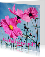 verjaardagskaart bloemen -LB