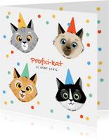 Verjaardagskaart feestelijk katten confetti proficikat