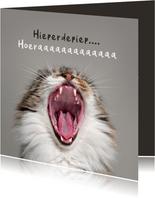 Verjaardagskaart grappig hoera kat poes humor