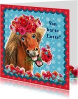 verjaardagskaart hip paard blauw rood