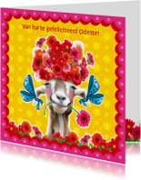 verjaardagskaart hippe geit