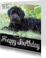 Verjaardagskaart hond Joey