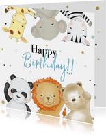 Verjaardagskaart jongen safari dieren met confetti