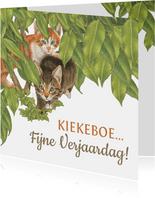 Verjaardagskaart Kittens zeggen Kiekekboe!