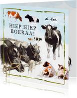 Verjaardagskaart met koeien hiep hiep boeraa!