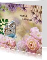 Verjaardagskaart met rozen en vlinder