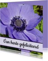 Verjaardagskaart paarse bloem - SK