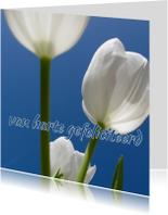 Verjaardagskaart tulpen - LB