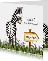 Verjaardagskaart zebra met wegwijzer