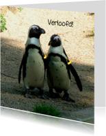 Verliefde - Verloofde Pinguins