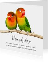 Vriendschap kaart 2 lieve vogeltjes
