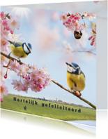 Vrolijke felicitatie met vogels
