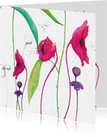 Warme bloemenwensen