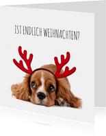 Weihnachtskarte Hund Welpe mit Hirschgeweih