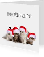 Weihnachtskarte Katzen mit Weihnachtsmützen