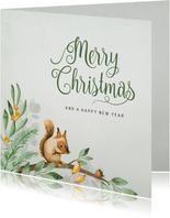 Weihnachtskarte mit Eichhörnchen auf Zweigen