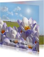 Welkom met voorjaarsbloemen