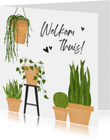 Welkom thuis kaart met groene kamerplanten