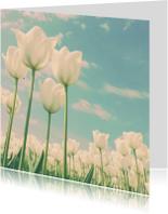 Witte tulpen voor moeder