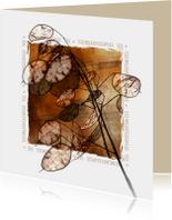 YVON DROOM kruid rouwkaart